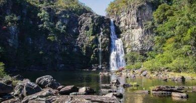 Opter pour un voyage sur mesure au Brésil pour explorer les parcs